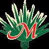 Mezcal plant M